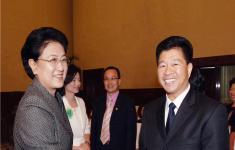 中央政治局委员、国务院副总理刘延东亲切接见集团公司董事长林金华